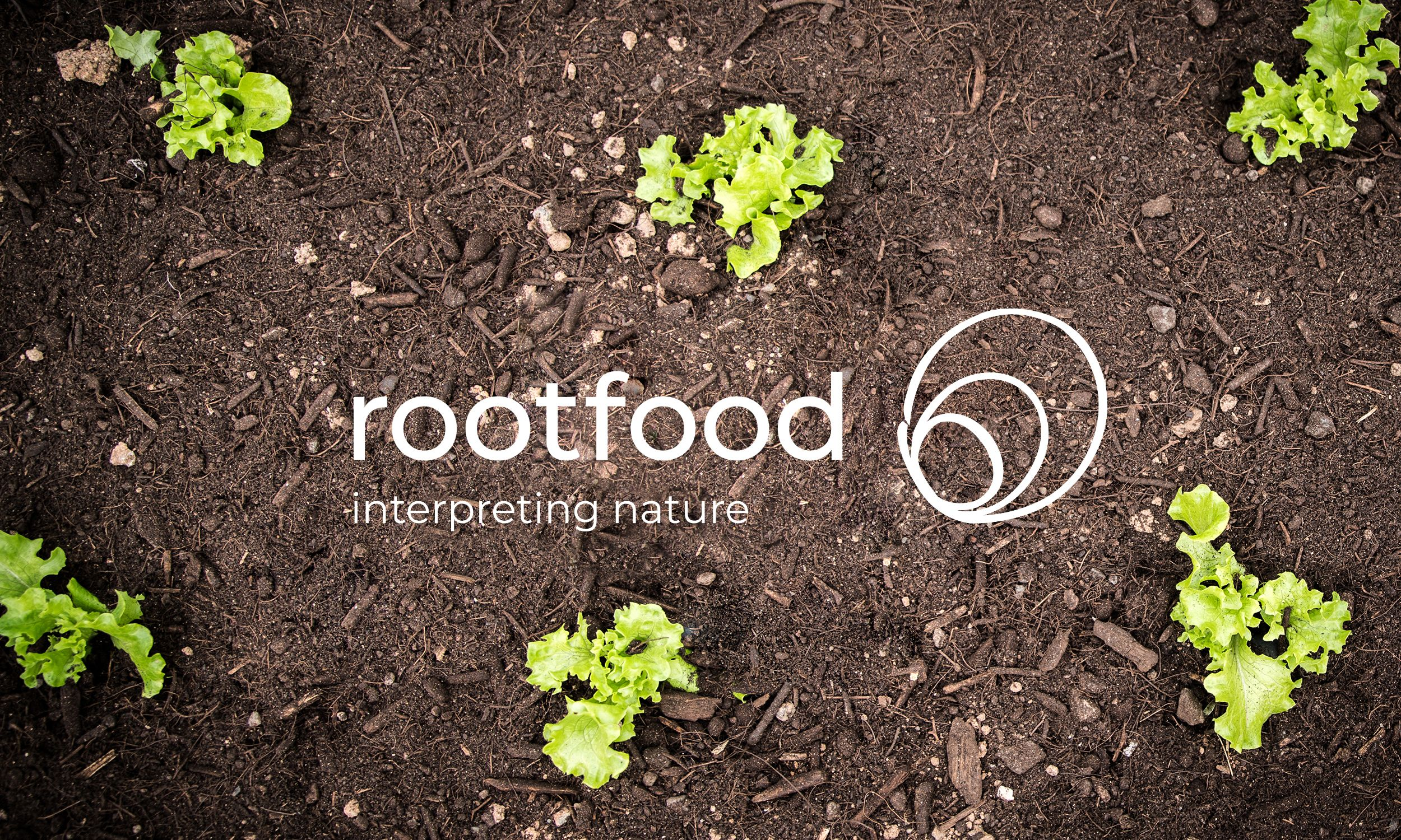 rootfood | case preview